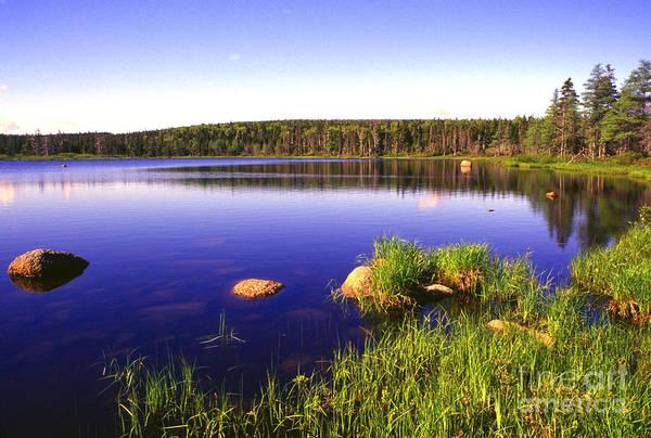 Photograph - Benjies Lake Cape Breton Island by Thomas R Fletcher