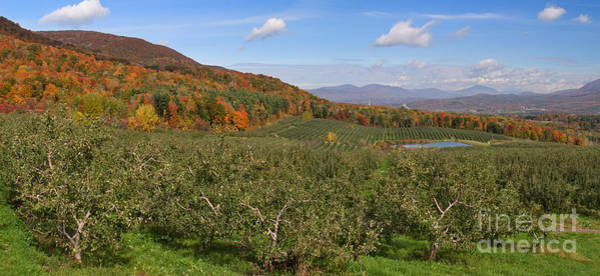 Photograph - Bennington Valley From The Orchard by Charles Kozierok