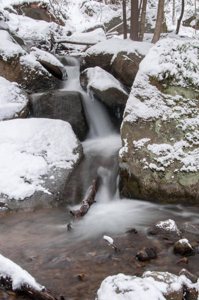 Photograph - Bent Run Falls  22165 by Guy Whiteley