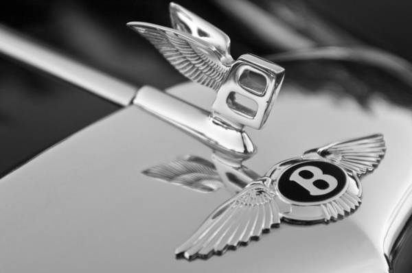 Vintage Hood Ornaments Photograph - Bentley Hood Ornament 5 by Jill Reger