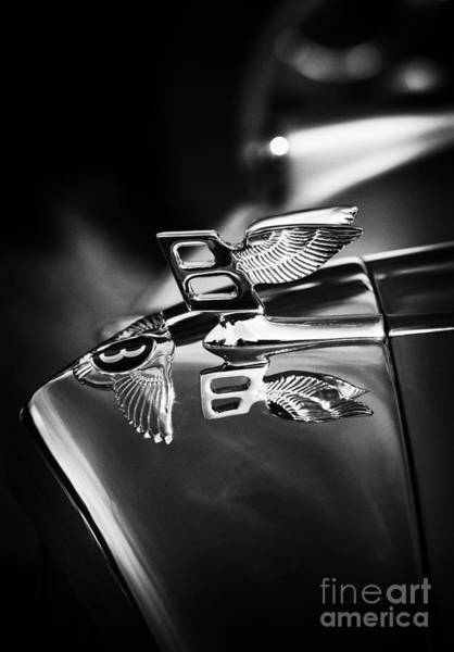 Photograph - Bentley Hood Ornament  by Tim Gainey