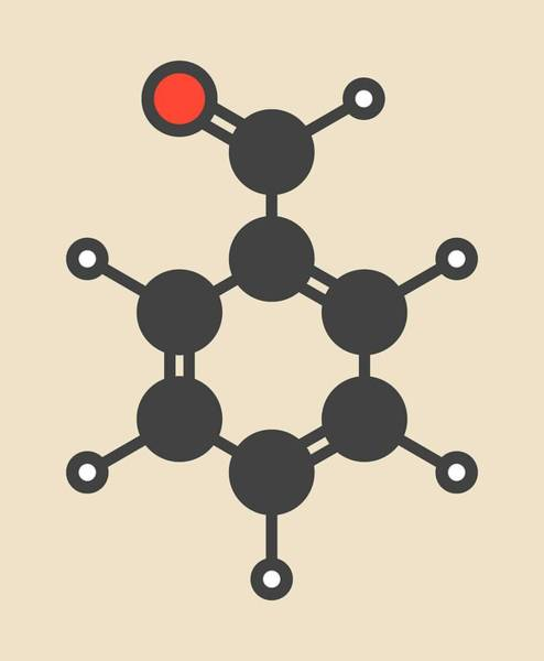 Molecular Wall Art - Photograph - Benzaldehyde Bitter Almond Odour Molecule by Molekuul/science Photo Library