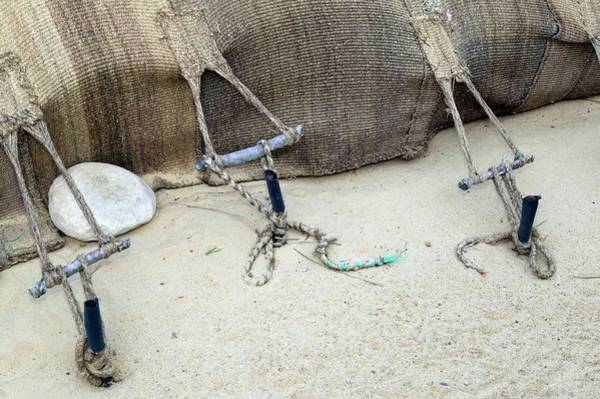 Tunisia Wall Art - Photograph - Berber Tent Pegs by Pascal Goetgheluck/science Photo Library