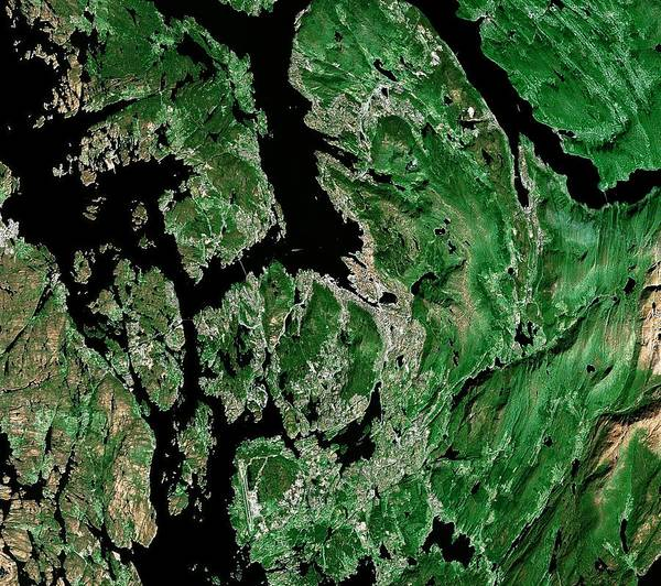 Scandinavia Photograph - Bergen by Mda Information Systems/science Photo Library
