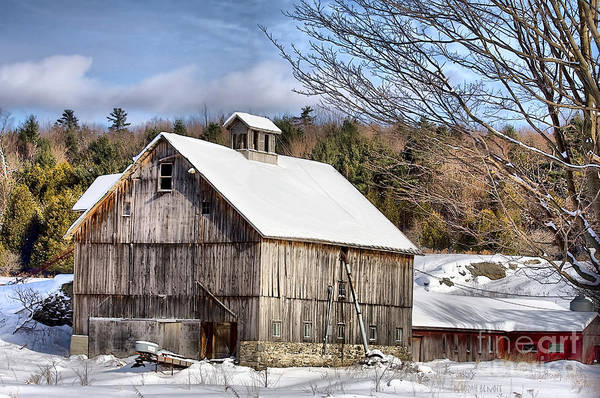 Photograph - Berkshire Barn In Winter by Deborah Benoit