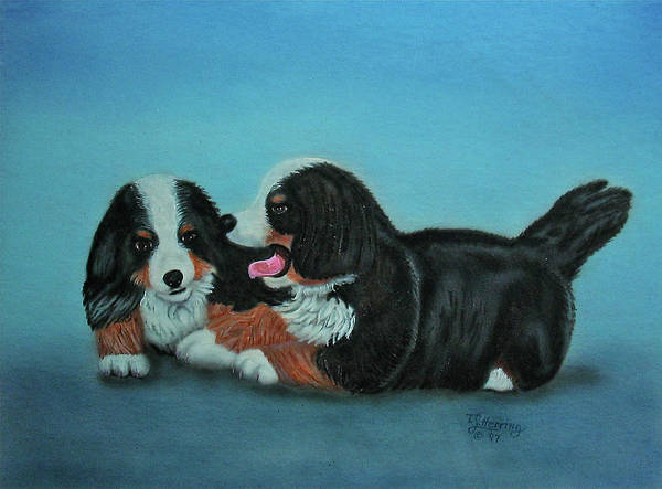 Painting - Bernese Mountain Puppies by Thomas J Herring