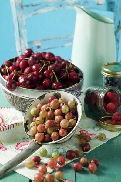 Bilberry Photograph - Berries And Cherries With Milk Jug by Eising Studio - Food Photo and Video