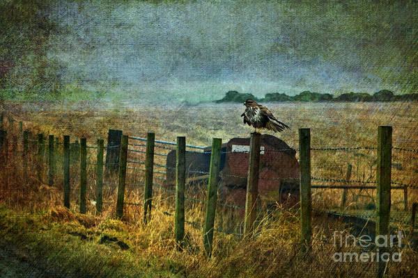 Fence Post Digital Art - Beside The Road by Liz  Alderdice