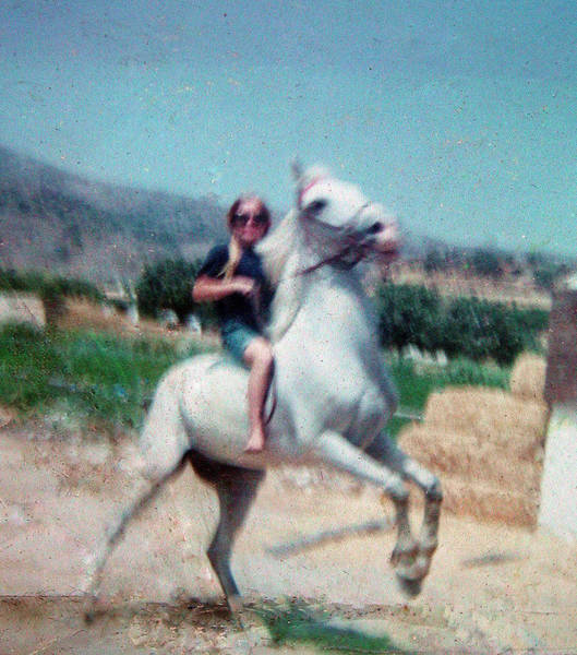 Photograph - Best Friends Year 1967-68-69 Horse Rayo - Colette by Colette V Hera  Guggenheim