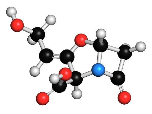 Pharma Wall Art - Photograph - Beta-lactamase Blocker Drug by Molekuul