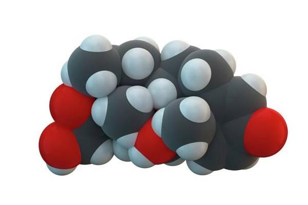 Wall Art - Photograph - Betamethasone Drug Molecule by Ella Maru Studio / Science Photo Library