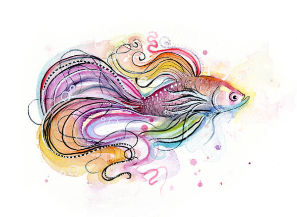 Wall Art - Painting - Betta Fish Watercolor by Olga Shvartsur