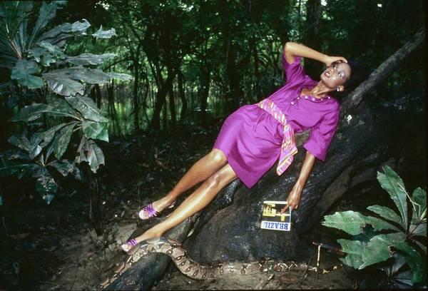 Reptile Photograph - Beverly Johnson Wearing Anne Klein by Kourken Pakchanian