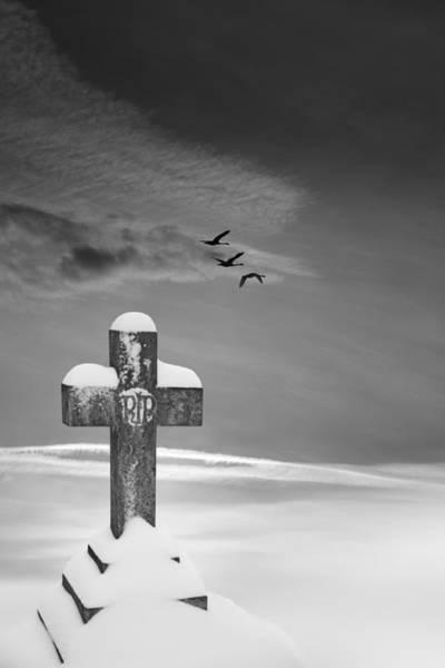 Photograph - Beyond by David Davies