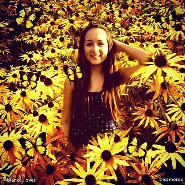 Sunflowers Wall Art - Photograph - Bianca by Cameron Bentley