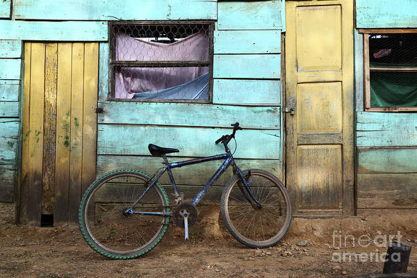 Photograph - Bicycle And Green House by James Brunker