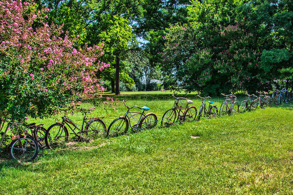Photograph - Bicycle Fence  by Jeanne May