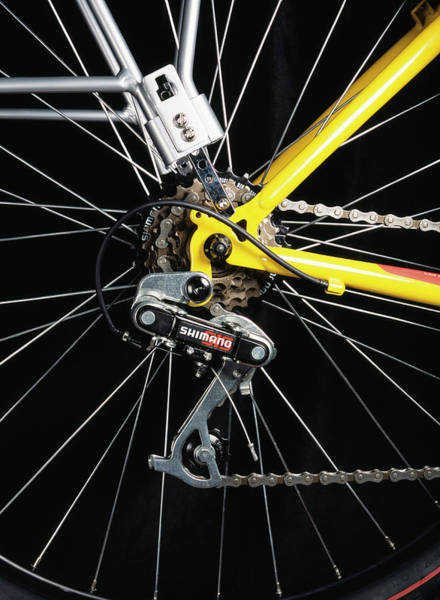 Wall Art - Photograph - Bicycle Gears by Cordelia Molloy/science Photo Library