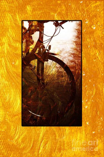 Photograph - Bicycle  by Randi Grace Nilsberg
