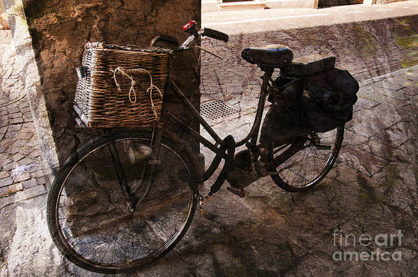 Photograph - Bicycle Shopping by Brenda Kean