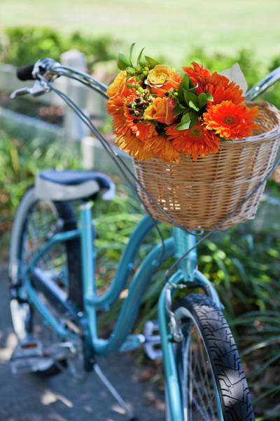 Bicycle Photograph - Bicycle With Basket Full Of Flowers by Pam Mclean