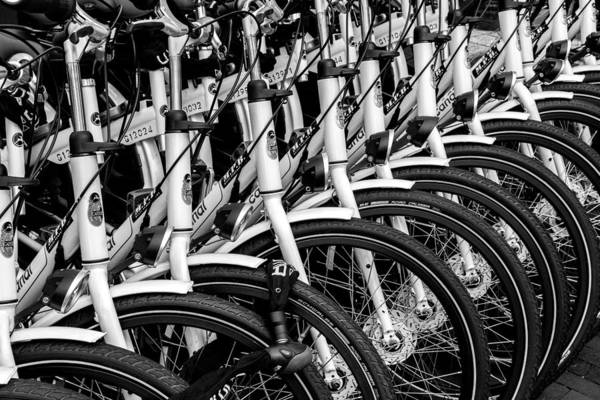 Photograph - Bicycles Bicycles Bicycles by Brian Grzelewski