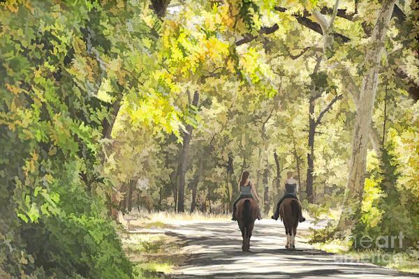 Bidwell Park Horse Trail Art Print