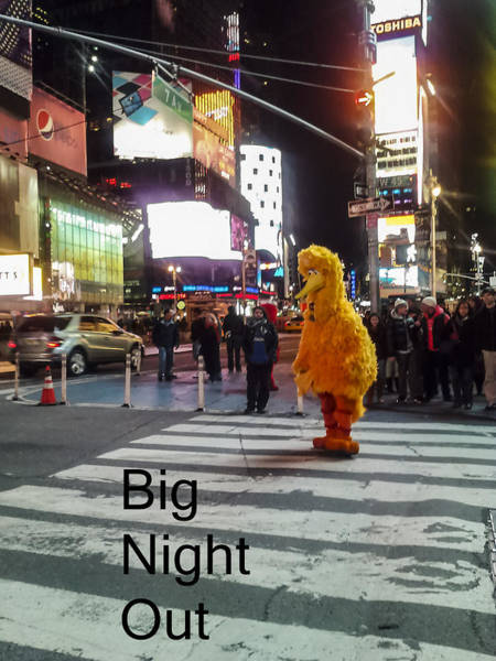 Photograph - Big Birds Big Night Out In Nyc by Scott Campbell