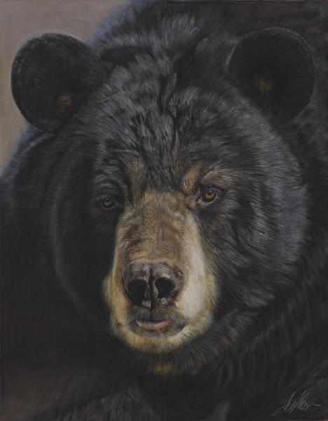 Painting - Big Black Bear by Terry Kirkland Cook