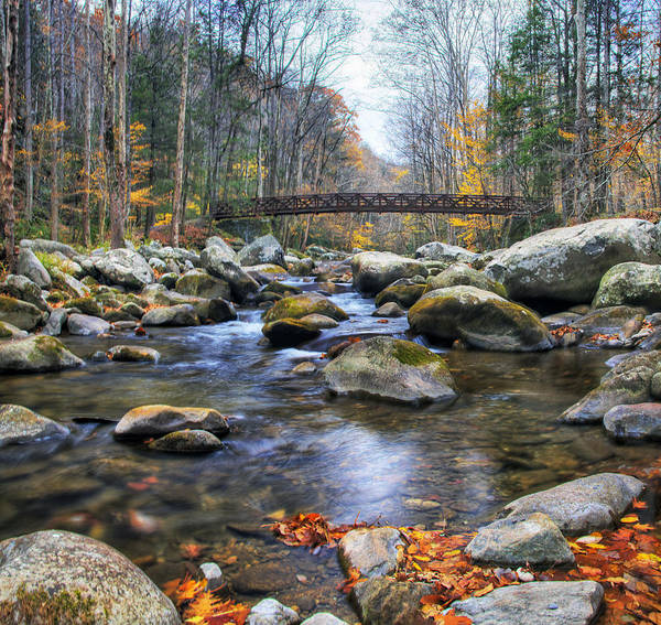 Photograph - Baxter Creek Bridge Panorama by Jim Dollar