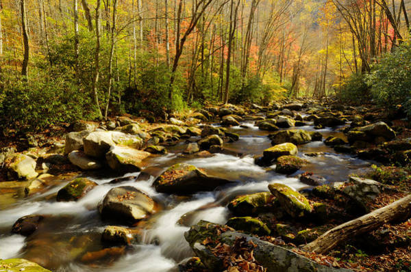 Photograph - Big Creek by Walt Sterneman