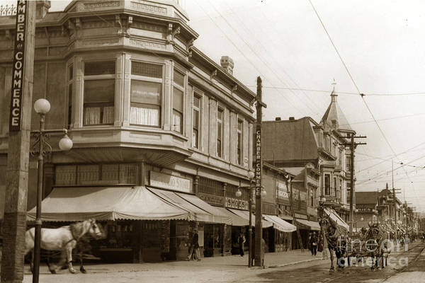 Photograph - Big Curio Store Santa Cruz At 28 Pacific Avenue On The Corner Of Lincoln And Pacific. 1908 by California Views Archives Mr Pat Hathaway Archives