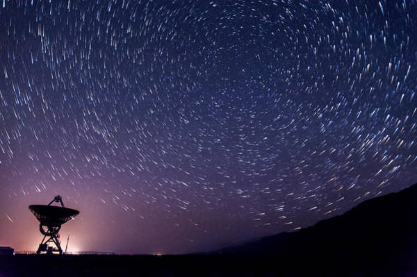 Star Trails Photograph - Big Ears Star Trails by Cat Connor