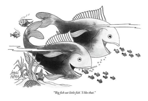 Seashore Drawing - 'big Fish Eat Little Fish.' I Like That by Joseph Farris
