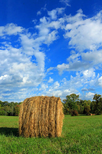 Photograph - Big Round Hay Bale by Lorna R Mills DBA  Lorna Rogers Photography