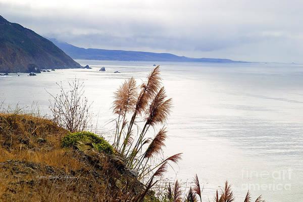 Photograph - Big Sur Coast Line by Richard J Thompson