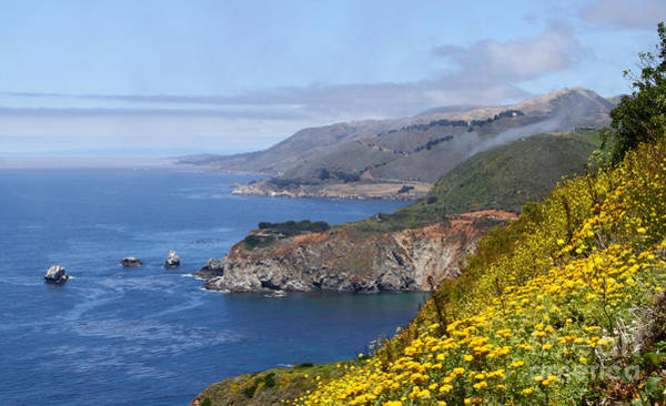 Photograph - Big Sur Coastline By Diana Sainz by Diana Raquel Sainz