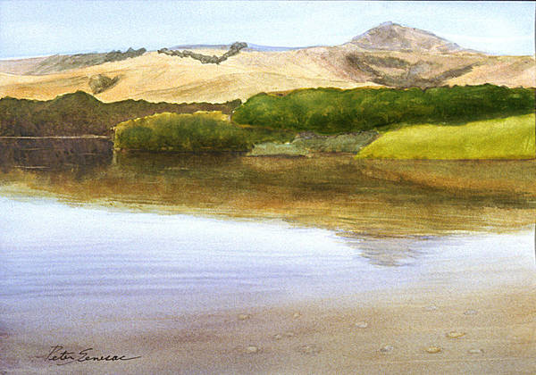 Painting - Big Sur River by Peter Senesac