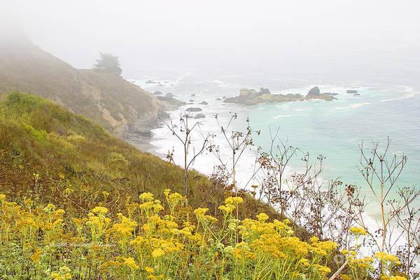 Photograph - Big Sur Seascape by Richard J Thompson