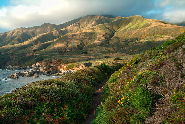 Photograph - Big Sur Trail At Soberanes Point by Charlene Mitchell