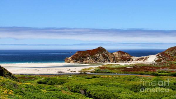 Photograph - Big Sur White Sands By Diana Sainz by Diana Raquel Sainz