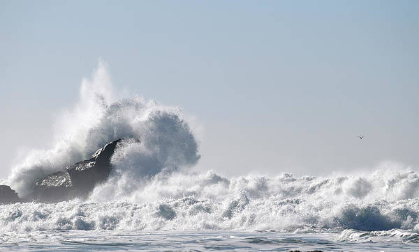 Half Moon Bay Photograph - Big Wave Braking At Rock In Half Moon by Sieboldianus