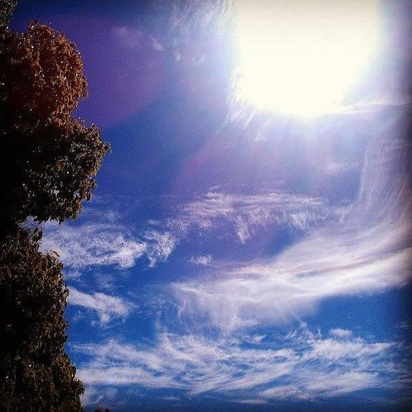 Sun Wall Art - Photograph - Big Whisper by CML Brown