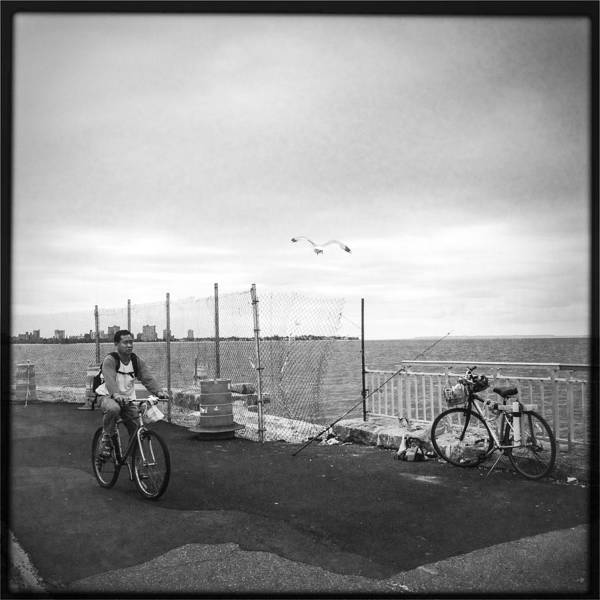 Photograph - Bikes And Bird by Frank Winters