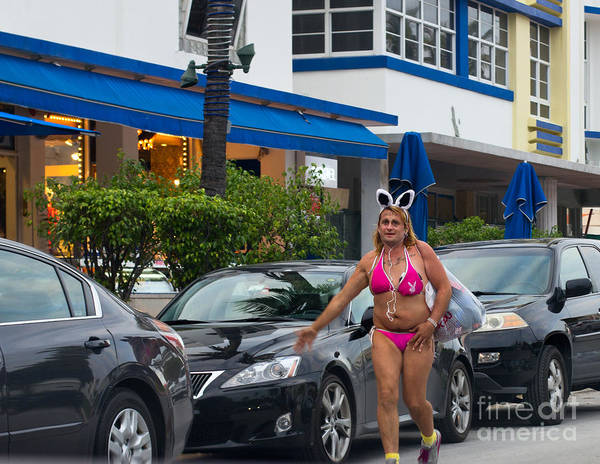 Photograph - Bikini Bunny In Miami by Les Palenik
