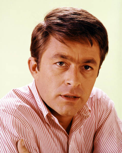 Courtship Photograph - Bill Bixby In The Courtship Of Eddie's Father by Silver Screen