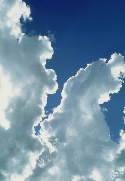 Cumulus Photograph - Billowing Bank Of Cumulus Clouds by Pekka Parviainen/science Photo Library