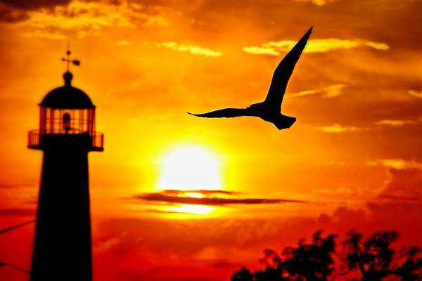 Photograph - Biloxi Sunset by Jim Albritton