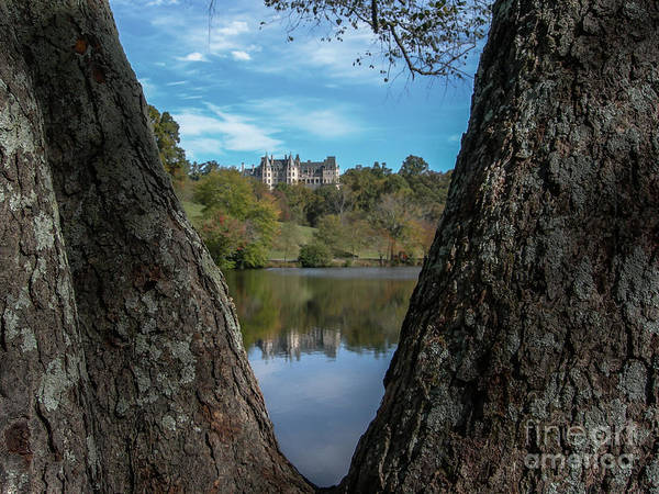 Photograph - Biltmore Through The Tree's by Dale Powell