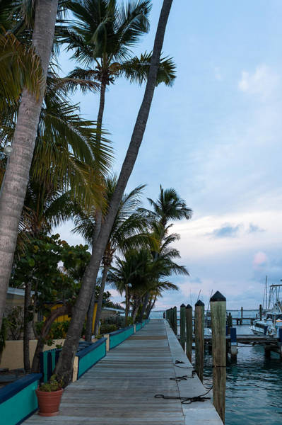 Photograph - Bimini Big Game Club Docks by Ed Gleichman